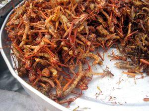 Fried grasshoppers - Bangkok