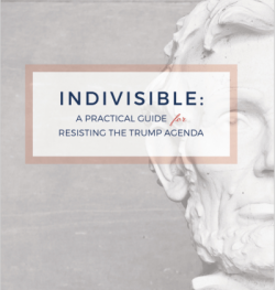 indivisiblecover
